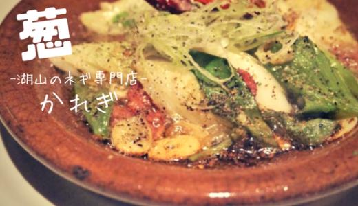 【かれぎ】葱!ネギ!ねぎ料理専門店の豊富なメニューにネギの可能性をみた!/鳥取市