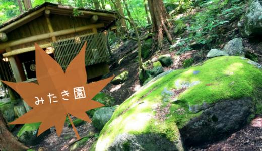 【みたきえん】深呼吸したくなる森の古民家で山菜料理!みたきえんさんに行ってきたよ〜!/智頭町