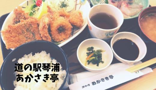 【あかさき亭】漁協直営!道の駅の美味しい海鮮定食屋さんで海の幸を堪能/琴浦町