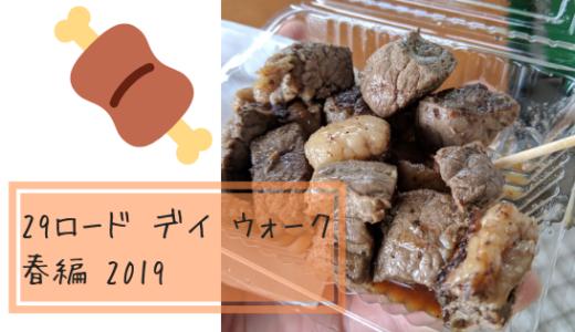 29ロード デイ ウォーク 春編(2019)に参加してきました!